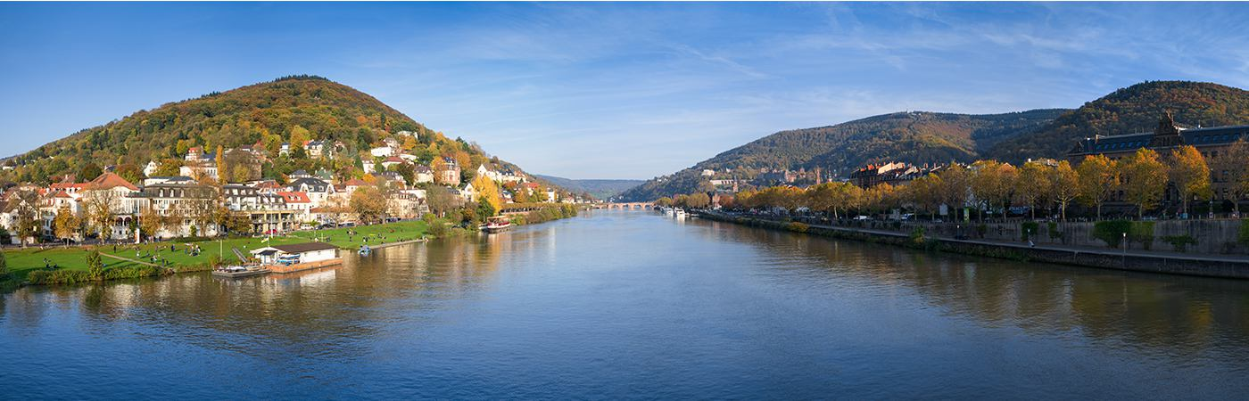 The Neckarwiese in Neuenheim